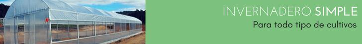 banner-invernadero-simple-canamerica