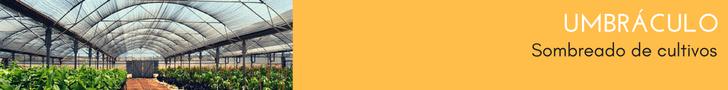 banner-umbraculo-canamerica