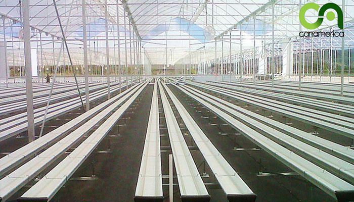 Beneficios de la agricultura hidropónica