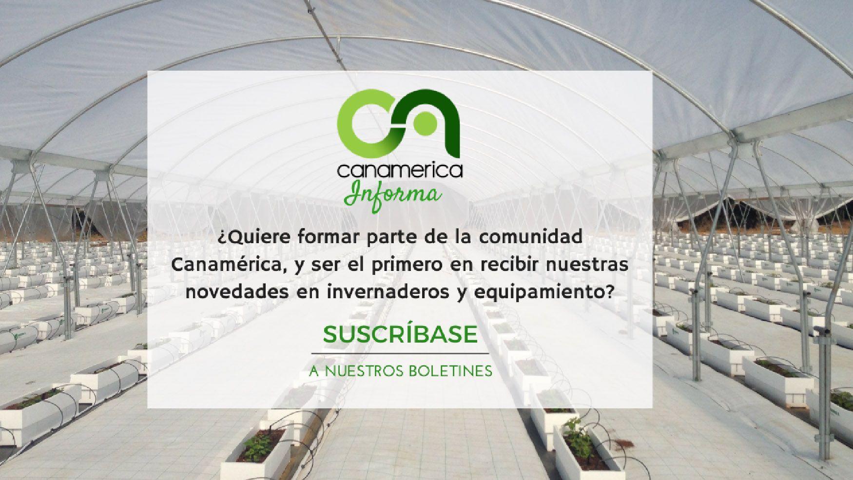 banner-newsletter-canamerica