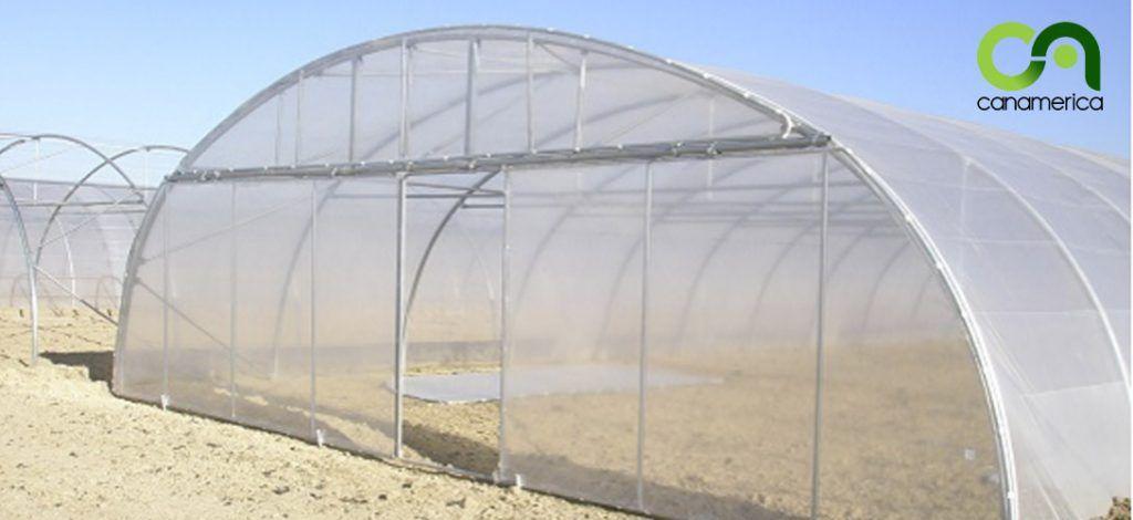 invernadero-tipo-tunel-1