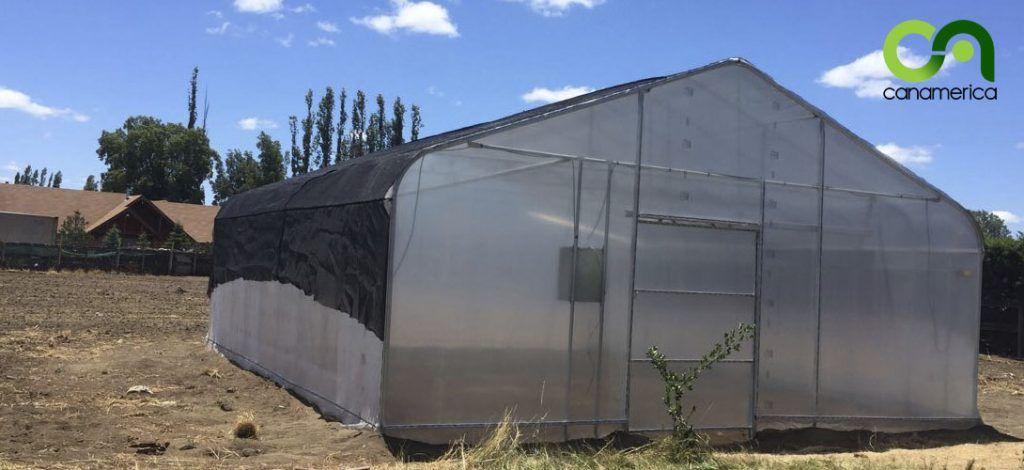 invernadero-tipo-tunel-3